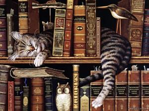 Учёный кот