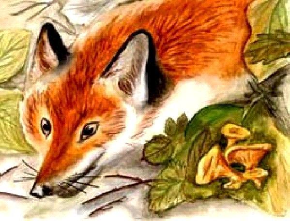 Як лисичка Івана-баштанника зробила царевичем