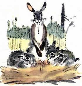 Про храброго Зайца-длинные уши, косые глаза, короткий хвост